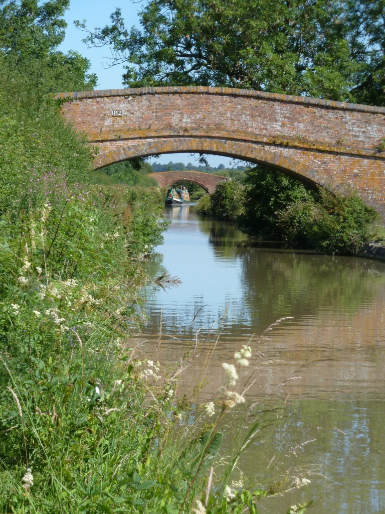 Bridges crossed the canals - some just for the farmers