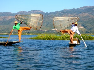 Inle Lake fisherman - for the show.